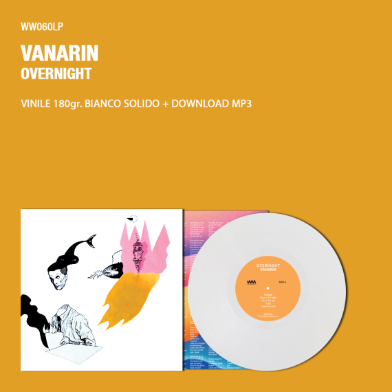 mock-up-vinile-vanarin